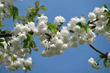 Offerta Ponti di Primavera in Umbria